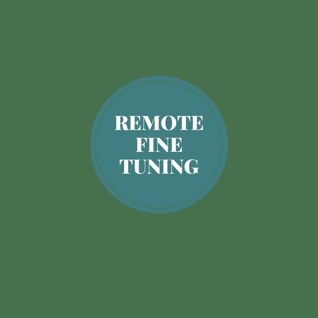 Remote Fine Tuning